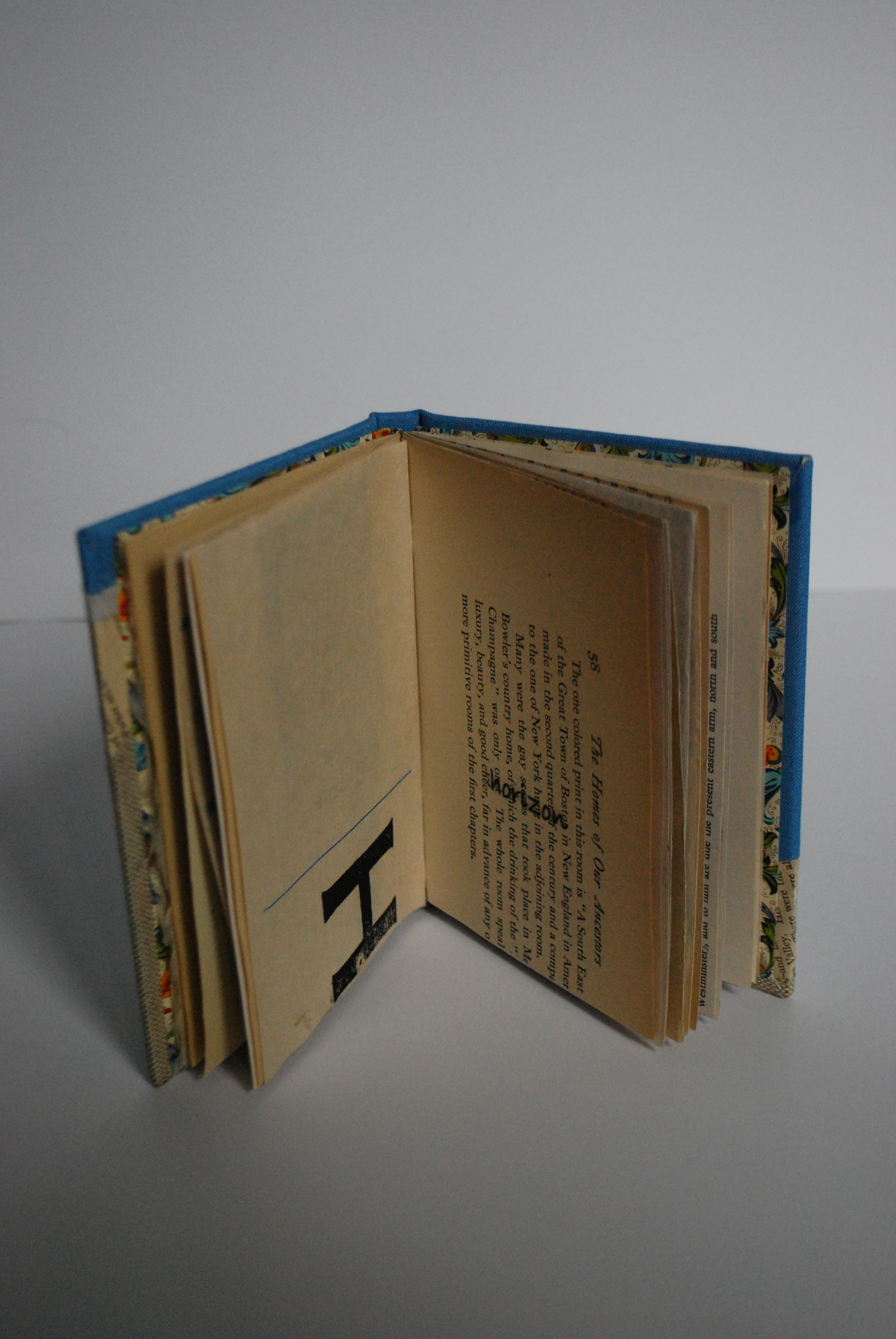 """Book opened to """"H"""" showing text """"horizon"""" on the altered book page"""
