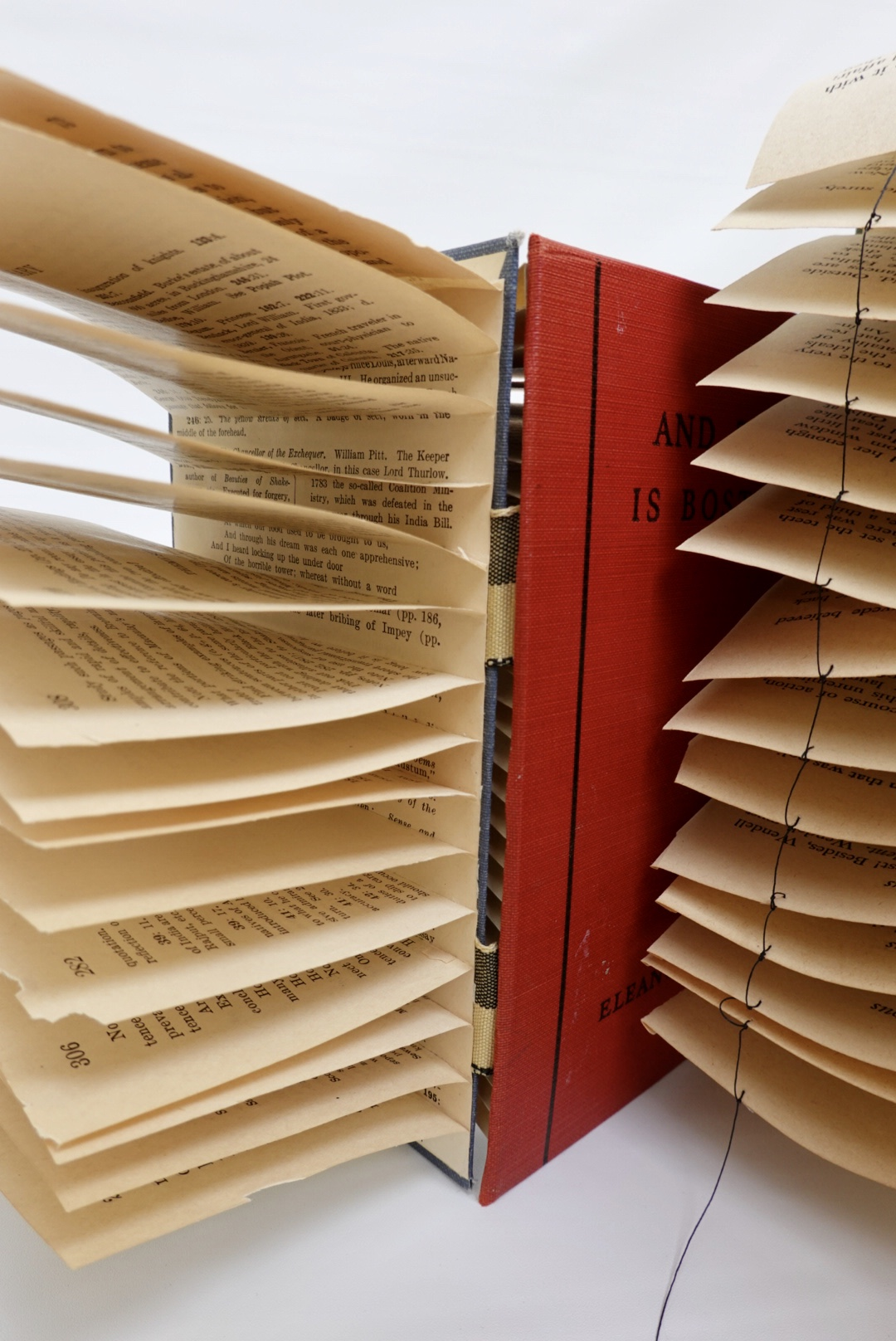 Book art Cover Story close up view of stacked pages